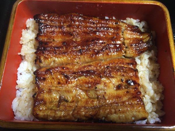 鰻 松村8