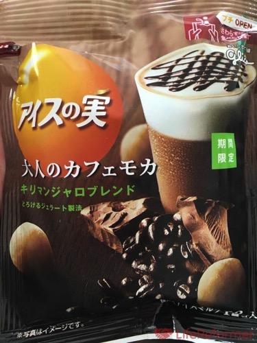 アイスの実 大人のカフェモカ2