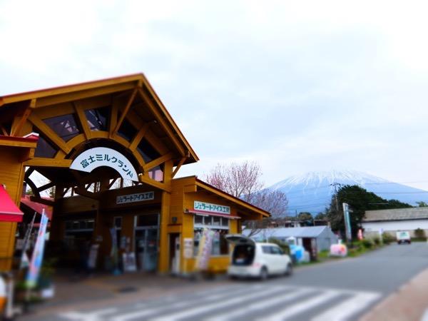 『富士ミルクランド』富士山を見ながら美味しいジェラートを食べれるだけじゃないよ!野菜もお土産も買えて、BBQもちちしぼり体験も出来るよ!