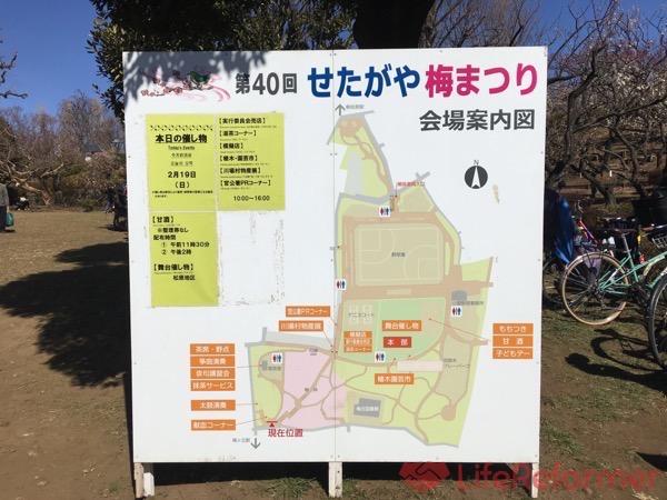 羽根木公園梅まつり2017 11
