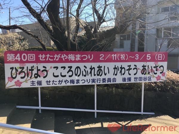 羽根木公園梅まつり2017 10