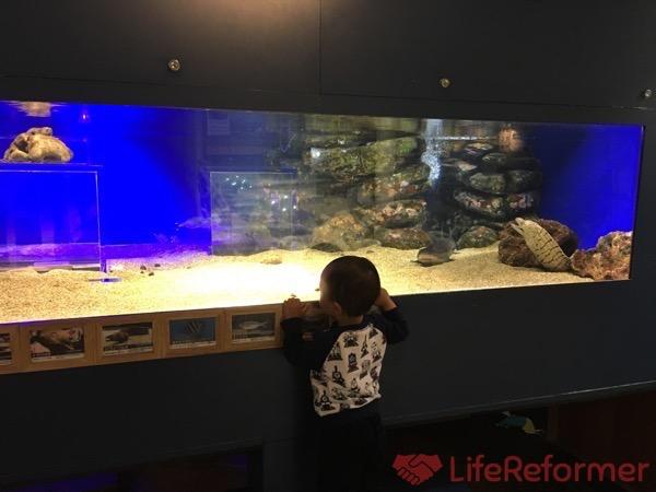 足立区生物園 9