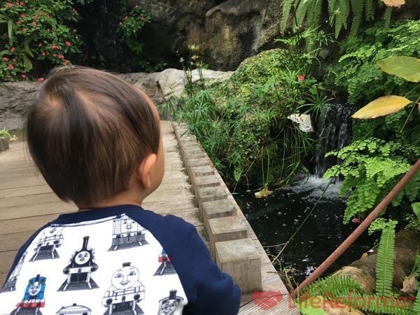 足立区生物園 3